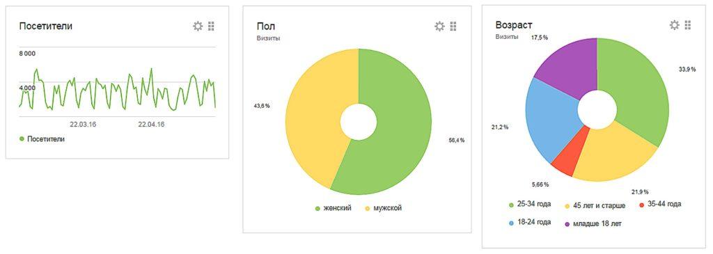 Результат раскрутки сайта