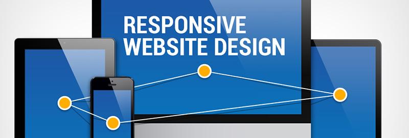 Бизнес поисковое продвижение сайта