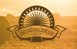 Разработка логотипа «Велесейские поля»