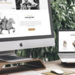 Создание и разработка профессиональных сайтов